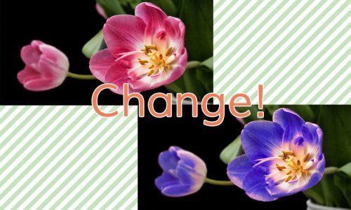 Photoshopで画像の一部の色を変える