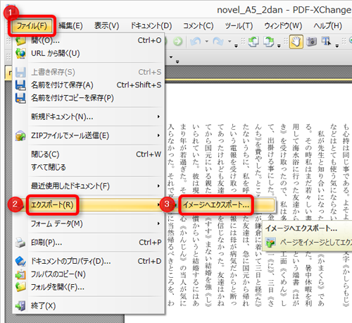 PDF-XChange Viewer操作画面